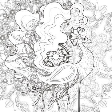 Muhteşem Tavus Kuşu Boyama Tabloları Tablosu Tablodenizicom