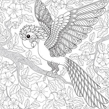 Papağan Boyama Tablo Boyama Tabloları Tablosu Tablodenizicom
